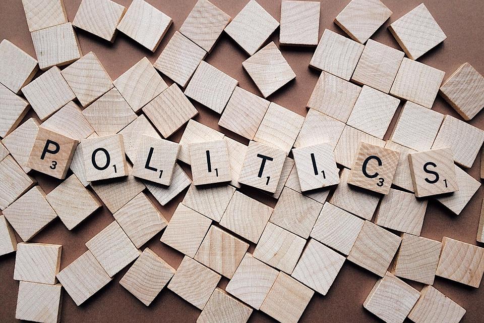Tipe Pemilih Dalam Politik